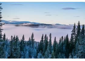 地球,雾,自然,风景,壁纸,(1)图片