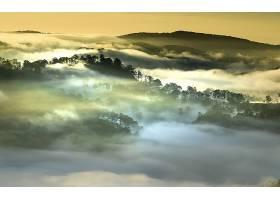 地球,雾,自然,风景,小山,森林,越南,壁纸,图片