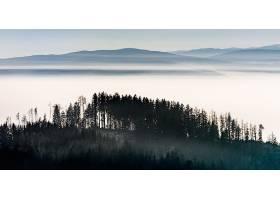 地球,雾,自然,风景,森林,全景画,壁纸,图片