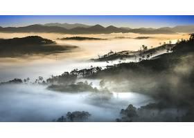地球,雾,越南,森林,壁纸,图片