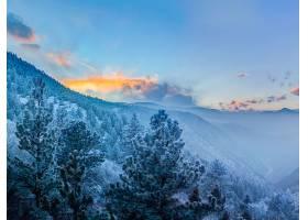 地球,雾,风景,森林,山,冬天的,壁纸,图片