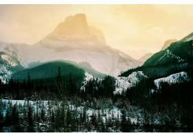 地球,山,山脉,自然,冬天的,森林,壁纸,图片