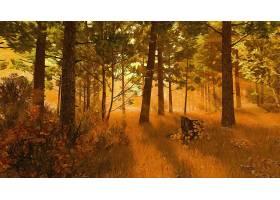 地球,森林,艺术的,秋天,壁纸,图片