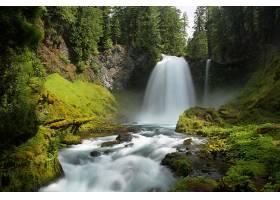 地球,瀑布,瀑布,自然,苔藓,河,森林,壁纸,图片