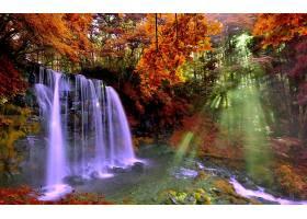地球,瀑布,瀑布,阳光,阳光,森林,秋天,叶子,树,岩石,壁纸,图片