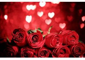 地球,玫瑰,花,红色,花,红色,玫瑰,花,心,Bokeh,浪漫的,壁纸,图片