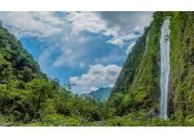 地球,瀑布,瀑布,自然,云,森林,壁纸,图片