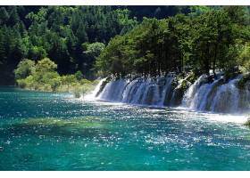 地球,瀑布,瀑布,自然,树,森林,壁纸,图片