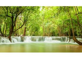 地球,瀑布,瀑布,自然,树,温室,壁纸,图片