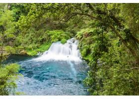 地球,瀑布,瀑布,自然,树,绿色的,壁纸,图片