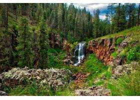 地球,瀑布,瀑布,自然,森林,树,岩石,壁纸,图片