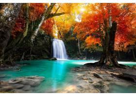 地球,瀑布,瀑布,秋天,叶子,树,岩石,森林,壁纸,图片