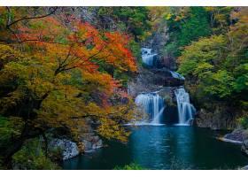 地球,瀑布,瀑布,秋天,叶子,树,岩石,池塘,壁纸,图片