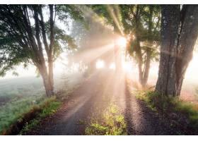 地球,阳光,自然,泥土,路,壁纸,(1)图片