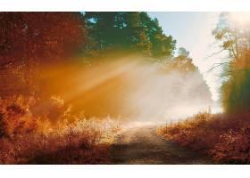 地球,阳光,自然,泥土,路,壁纸,图片