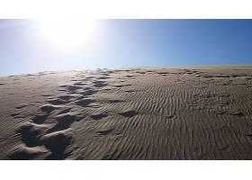 地球,沙漠,壁纸,(2)