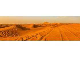 地球,沙漠,壁纸,(8)