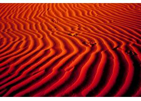 地球,沙漠,沙,撒哈拉沙漠,沙丘,非洲,阿尔及利亚,橙色的,脚印,壁