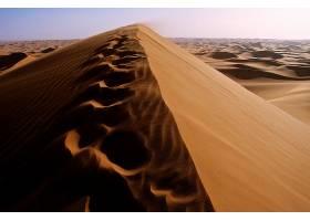 地球,沙漠,阿尔及利亚,非洲,沙丘,沙,撒哈拉沙漠,脚印,壁纸,