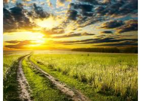 地球,小路,自然,风景,地平线,草,天空,日出,领域,壁纸,图片