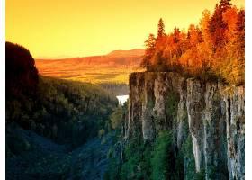 地球,日落,自然,森林,壁纸,图片