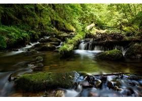 地球,溪流,自然,森林,岩石,壁纸,(1)图片