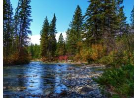 地球,河,石头,自然,森林,壁纸,图片
