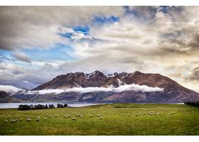 山,山脉,新建,西兰岛,羊,自然,风景,云,壁纸,