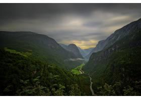 地球,风景,山,绿色的,森林,树,河,山谷,壁纸,