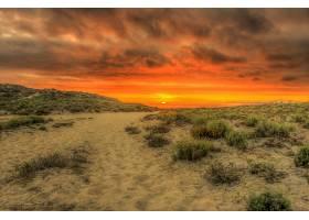 日落,自然,海滩,沙,地平线,云,壁纸,