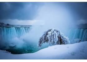瀑布,瀑布,冬天的,雪,冰,树,壁纸,图片