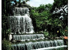 瀑布,瀑布,自然,马尼拉,菲律宾,水,植物,绿色的,壁纸,图片