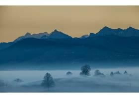 雾,自然,山,风景,树,壁纸,图片