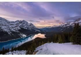 佩托,湖,湖,湖,自然,风景,山,森林,山谷,加拿大,壁纸,图片