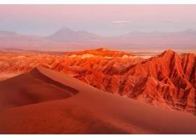 沙漠,壁纸,(4)图片