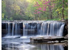 瀑布,瀑布,自然,岩石,水,森林,壁纸,图片