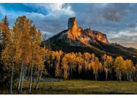 山,山脉,自然,树,桦树,森林,壁纸,图片