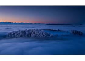 雾,自然,晚上,天线,地平线,壁纸,图片