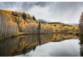 地球,反射,自然,森林,秋天,湖,风景,壁纸,图片
