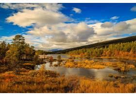 地球,河,挪威,树,云,秋天,自然,风景,壁纸,图片