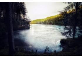 地球,湖,湖,自然,冰冻的,森林,壁纸,图片