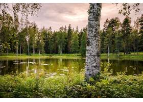 地球,湖,湖,自然,树,壁纸,(1)图片