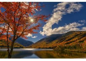 地球,湖,湖,自然,树,阳光,秋天,风景,云,壁纸,