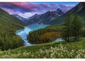 地球,湖,湖,自然,风景,山,森林,壁纸,图片