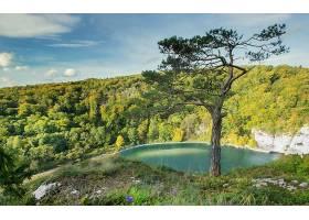地球,湖,湖,风景,德国,自然,森林,壁纸,图片