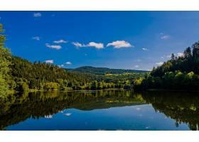 地球,反射,自然,湖,森林,天空,壁纸,图片
