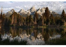 地球,反射,自然,湖,森林,树,山,壁纸,图片