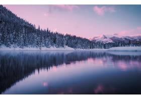 地球,湖,湖,冬天的,反射,自然,森林,壁纸,图片