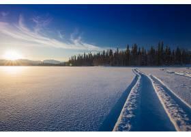 地球,冬天的,自然,雪,风景,日出,壁纸,图片