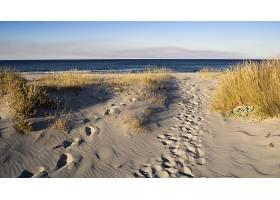 地球,海滩,脚印,壁纸,